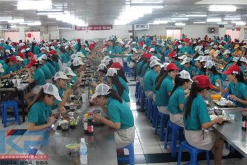 Lắp đặt bếp ăn công nhân Ngọc Sơn tại Hà Nam
